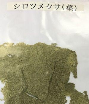 シロツメクサ葉の紙