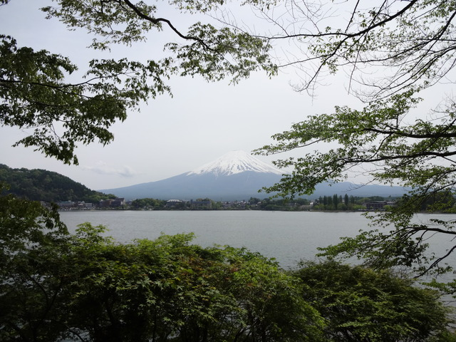 FMC富士山
