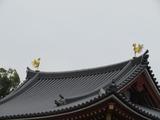 屋根上の鳳凰