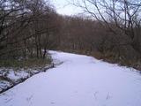 冬の散歩道2013.2.6