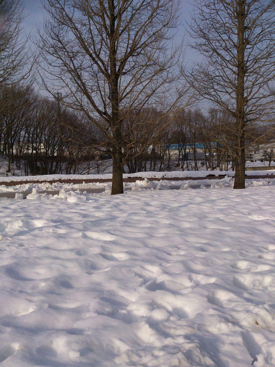 2014冬風景1