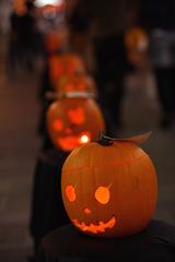 おばけかぼちゃの夜
