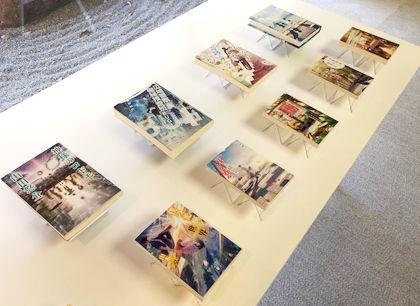 fusui_books