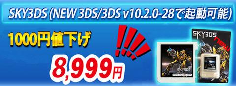 SKY3DS1021