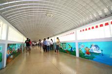 渡り廊下渡り隊