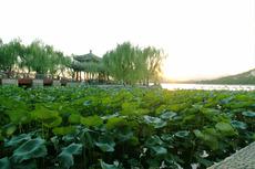 昆明湖 夕日