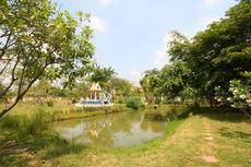 尼僧院 裏庭