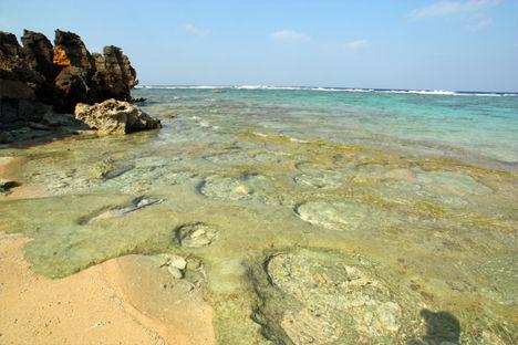 古宇利島 珊瑚礁跡