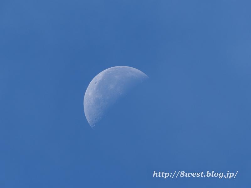 月齢22.81