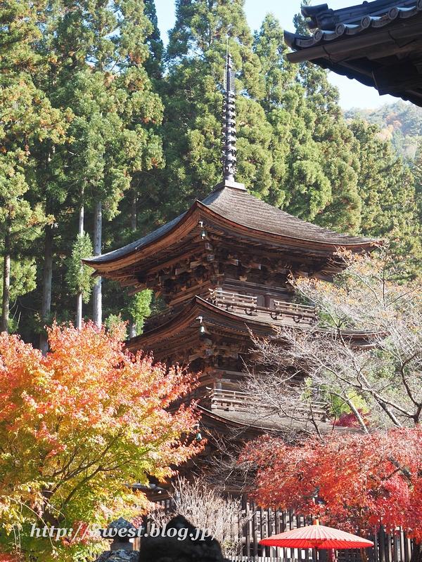 新海三社神社03