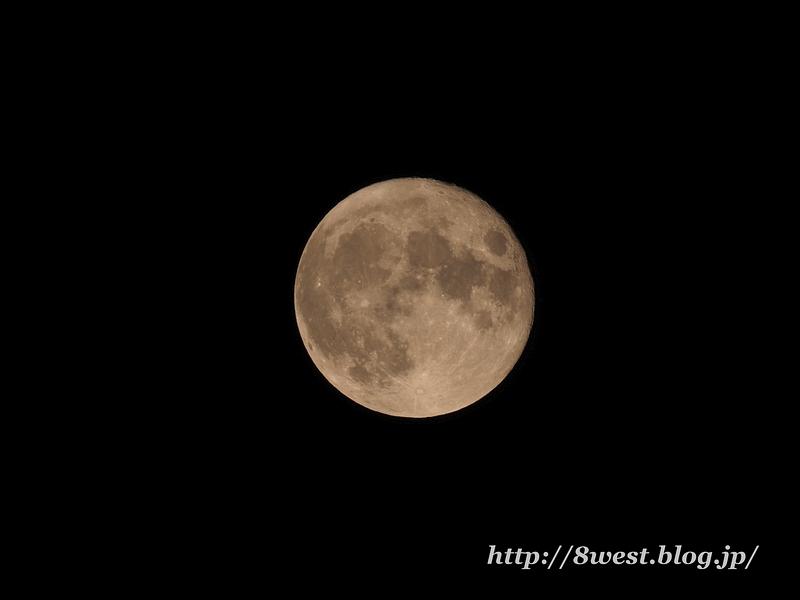 望月14.80