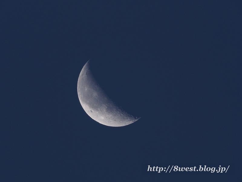 月齢24.08