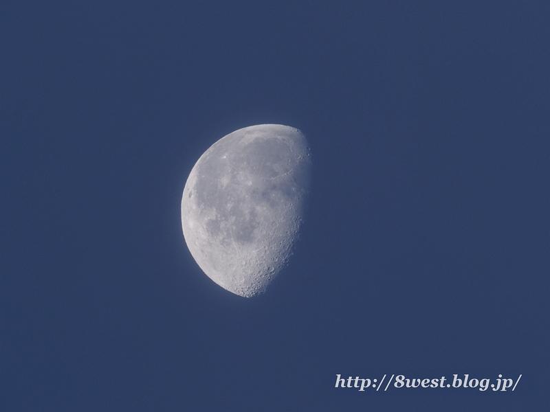 月齢20.70