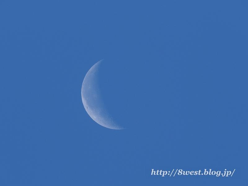 月齢23.85