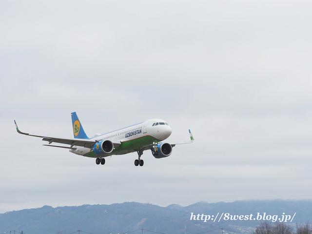 ウズベキスタン航空03