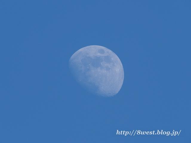 月齢9.55