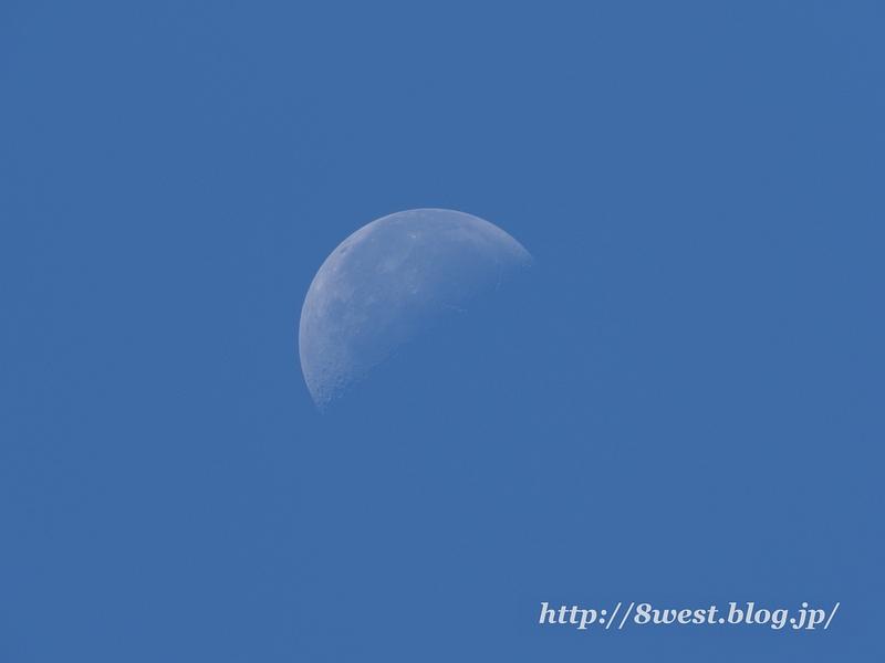 弓張月21.87