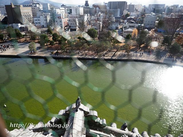 松本城06