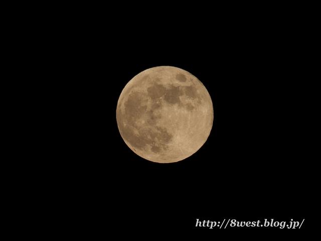 望月14.04