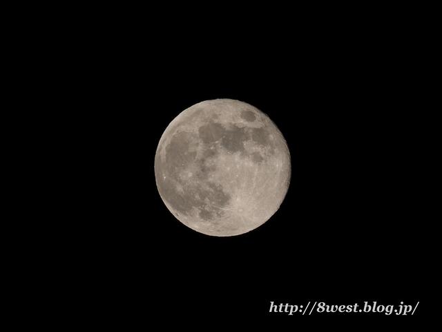 望月14.60