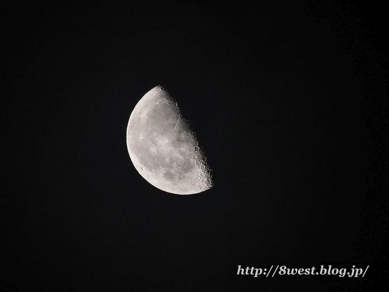 月齢21.00