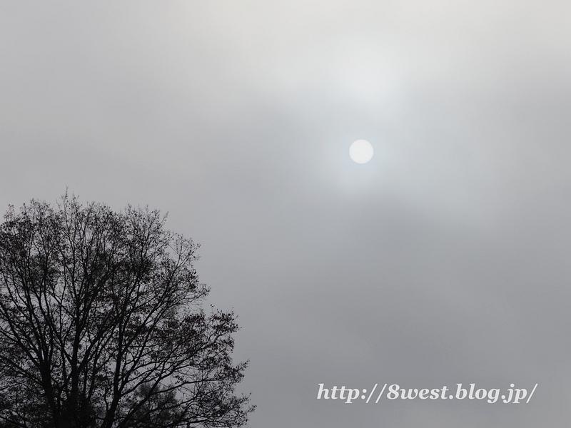 霧中の太陽