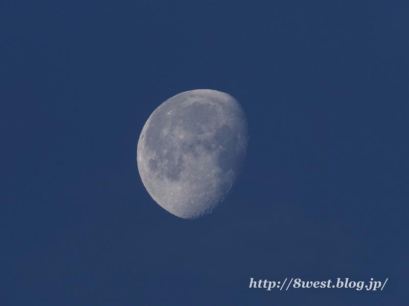 月齢18.73