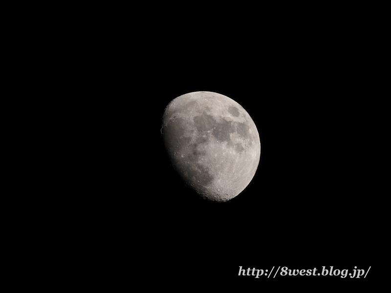 月齢10.67