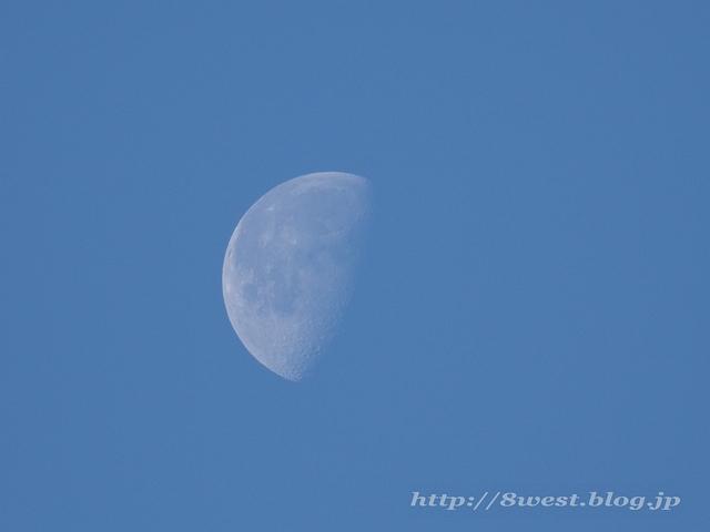 月齢20.23