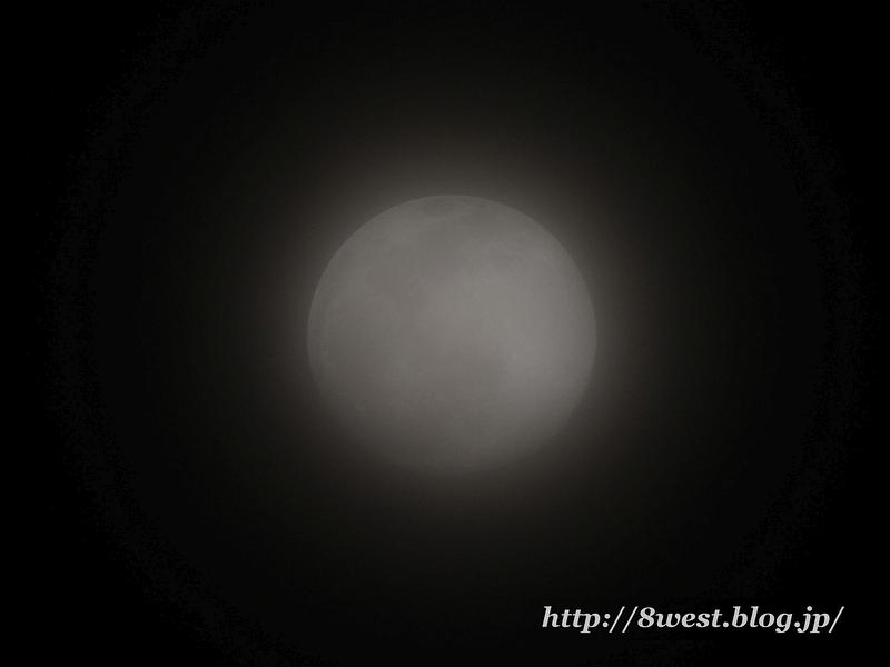 望月14.01