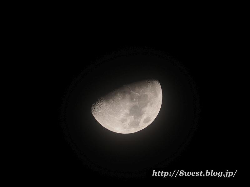 月齢9.31