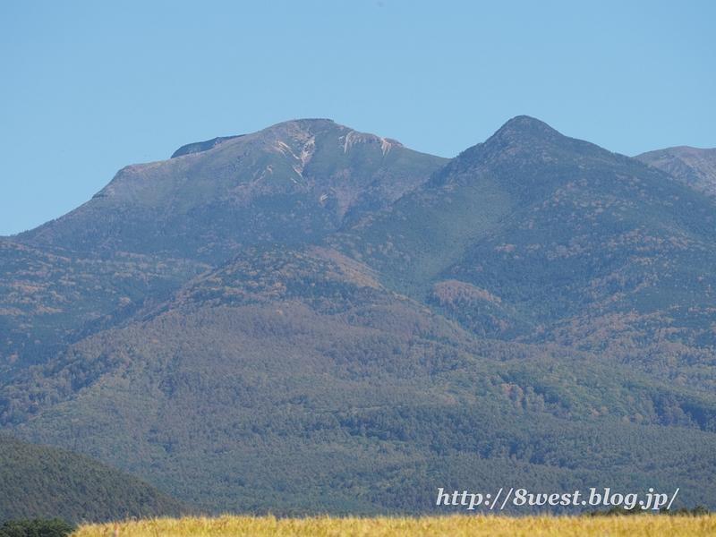 硫黄峰の松目