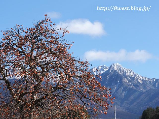 柿と八ヶ岳