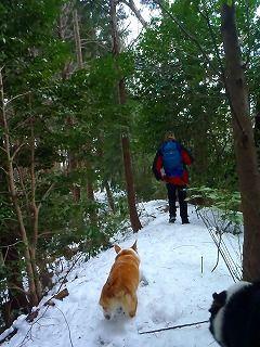 雪のさくら坂 076