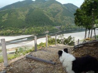 熊野川カヌー 024