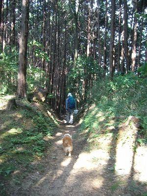 千早赤阪村 045