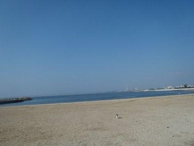 樽井サザンビーチ 001