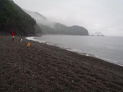 宮川カヌー 130