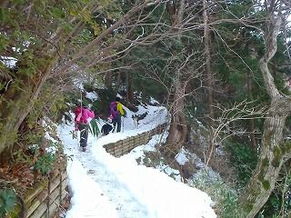 雪のさくら坂 024