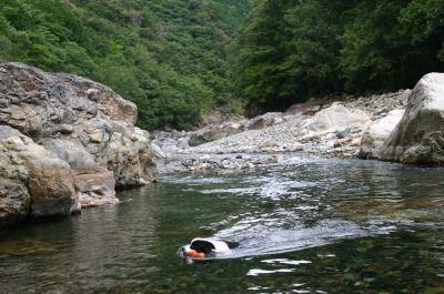 銚子川 089