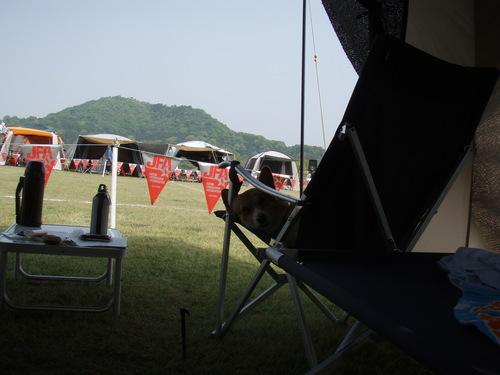 kasihara 004