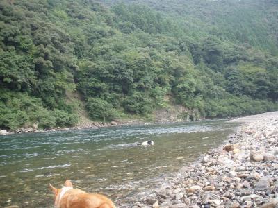 熊野川 101