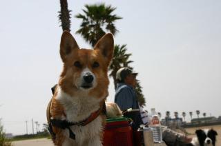 樽井サザンビーチ 273