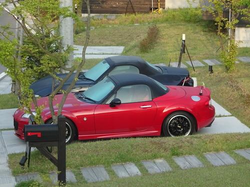 朝露に濡れる車