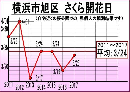 桜開花推移グラフ