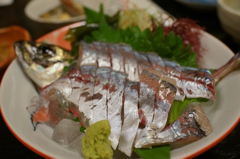 博多食い倒れ旅行 「寿司 味処 河童」で安くてめちゃめちゃ旨い魚三昧