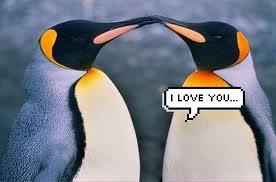Iloveyou 画像