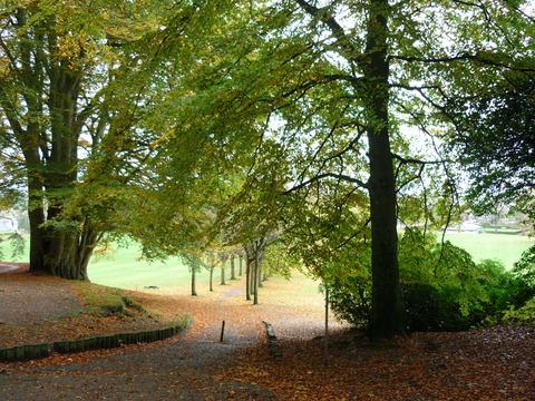 Findhorn autumn 2009 025