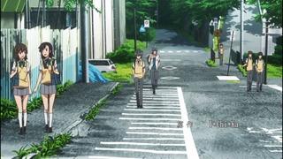 11-OVA(5)