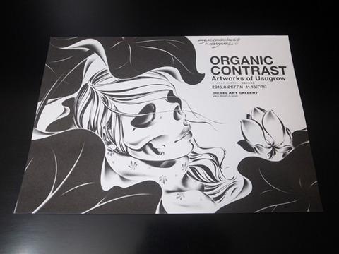 ORGANIC CONTRAST